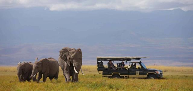 Luxury Kenya Classic Sky Safari