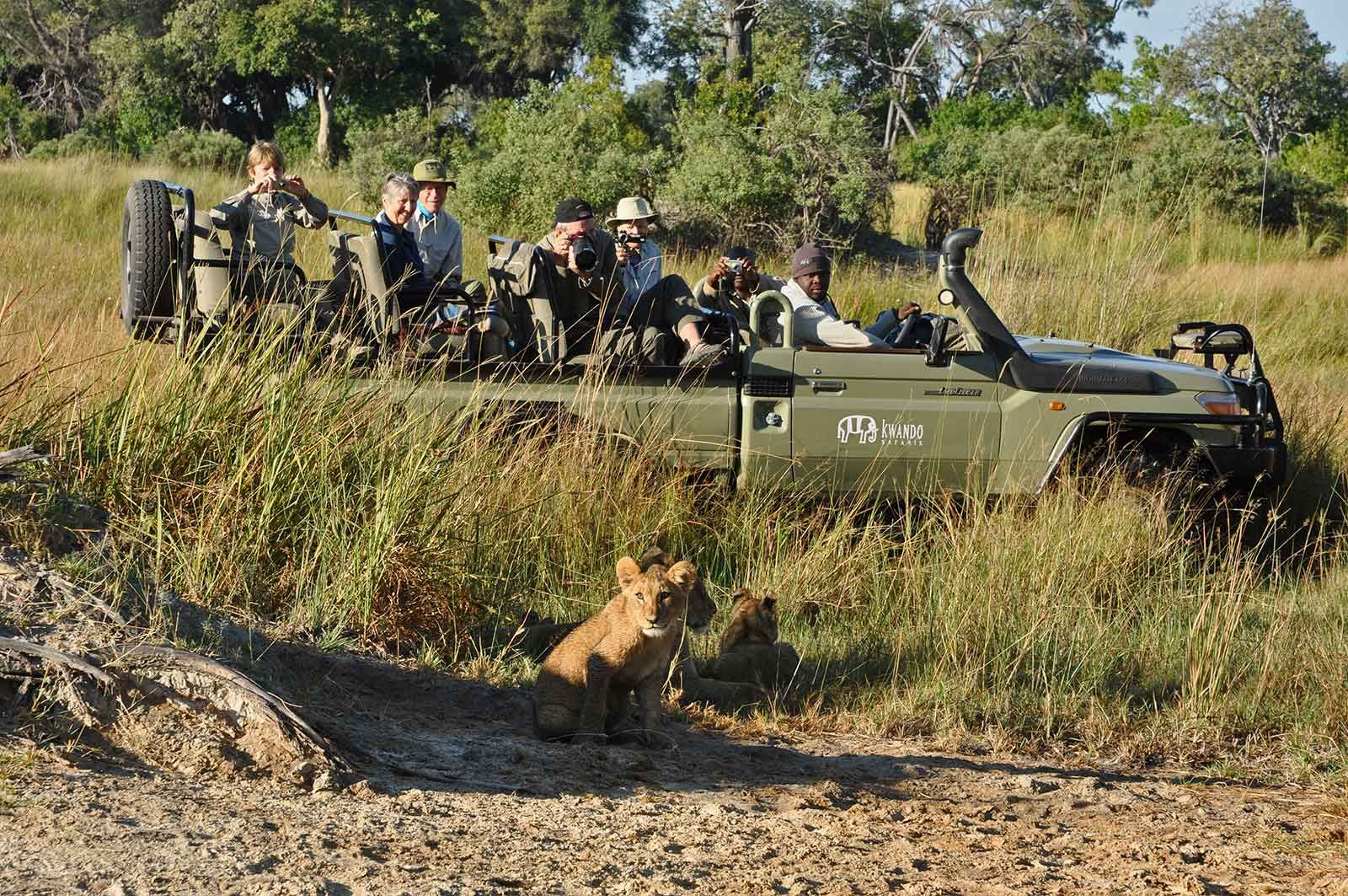 Discover the best of a Botswana Safari