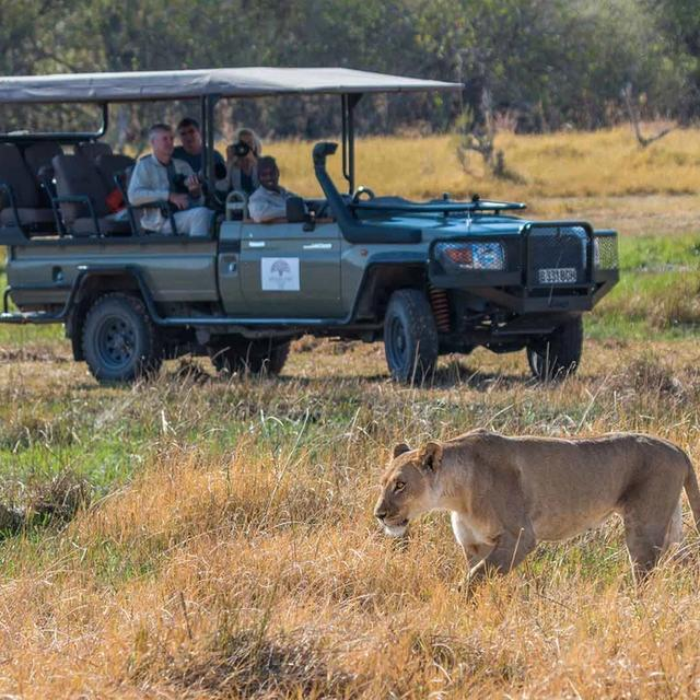 Discover Hwange