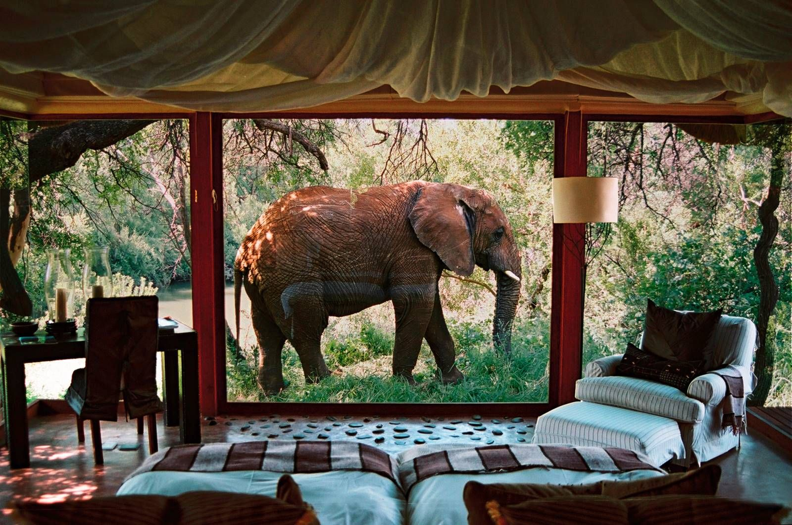 Sanctuary Makanyane Safari Lodge