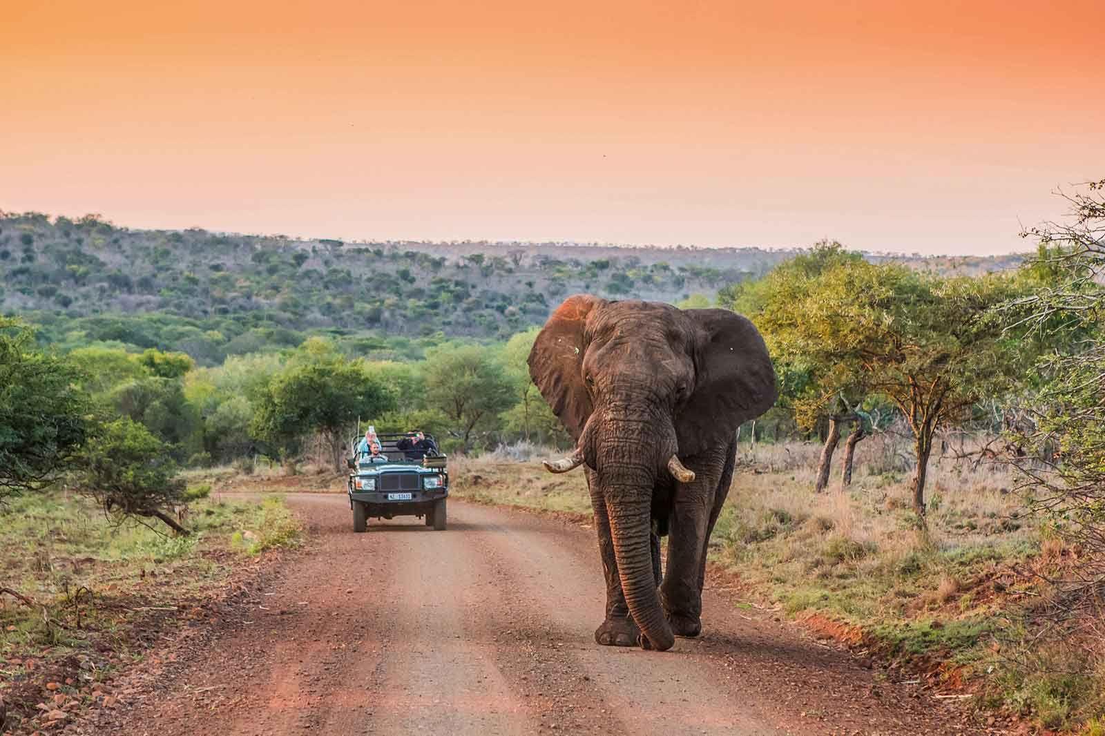 Zululand Rhino Reserve