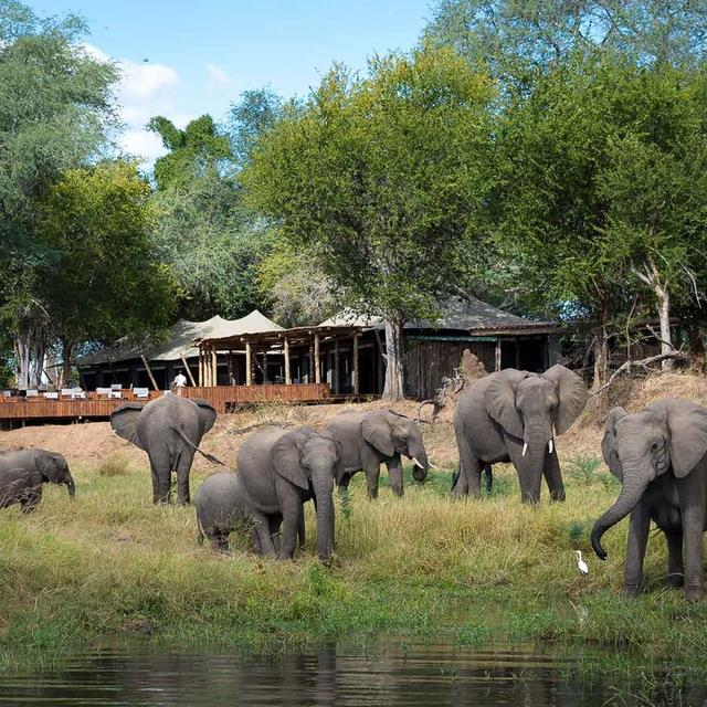 Discover Mana Pools