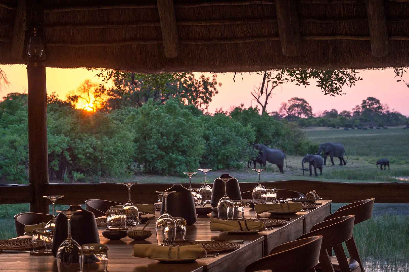 A Luxurious Safari to Botswana