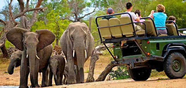 Kruger Adventure Safari