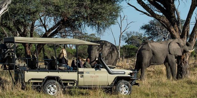 Okavango Introduction