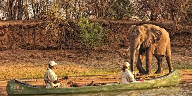 Wild Zimbabwe Highlights