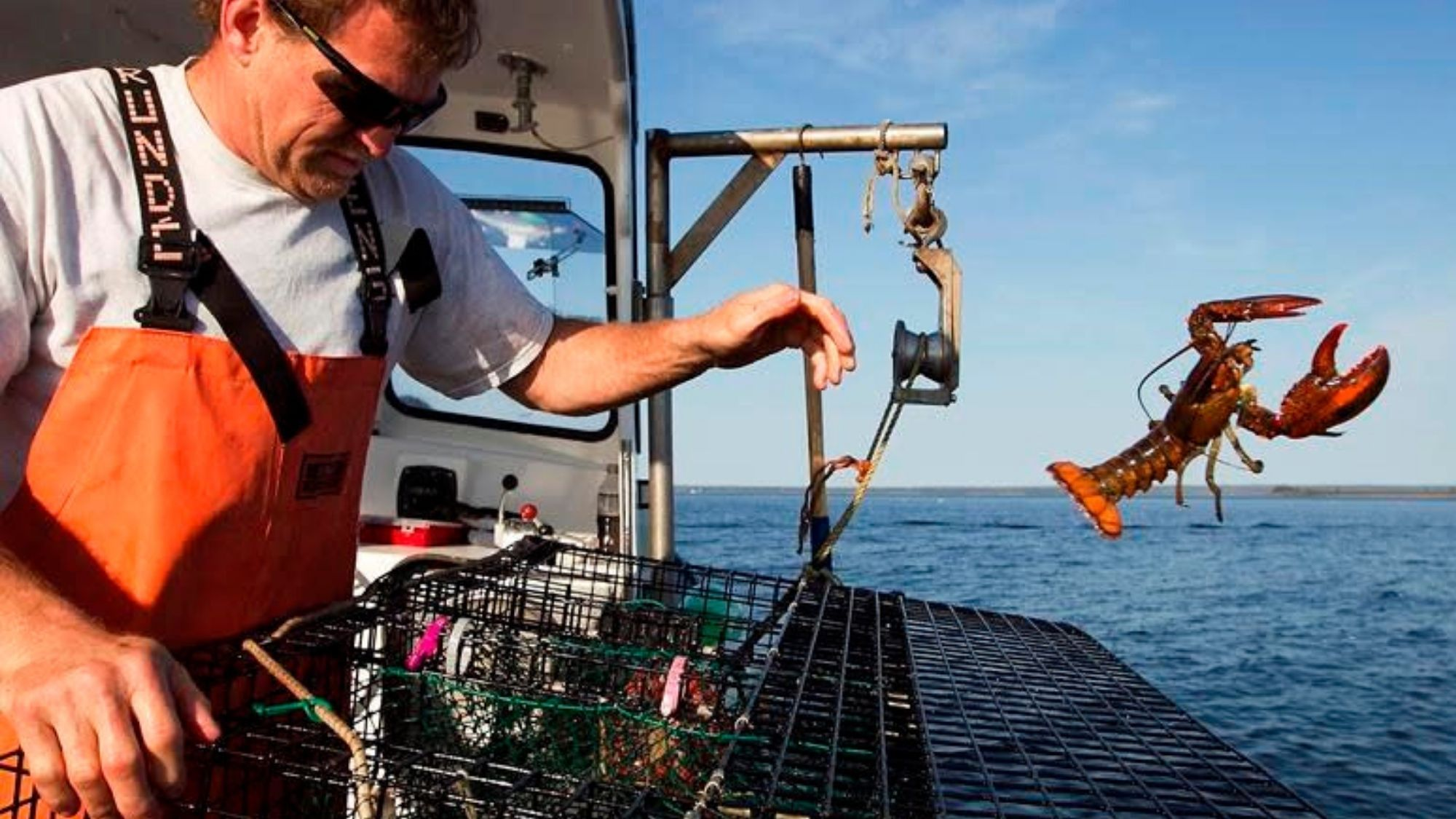 Bad news for lobster lovers: High demand hikes seafood prices this summer