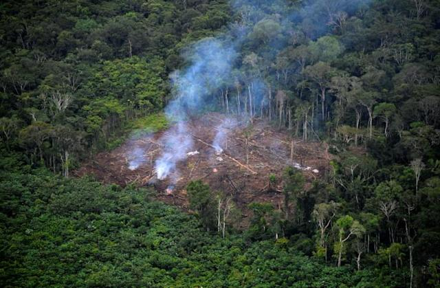 Overexploitation causes Earth's vital signs to deteriorate photo from Yahoo News Philippines