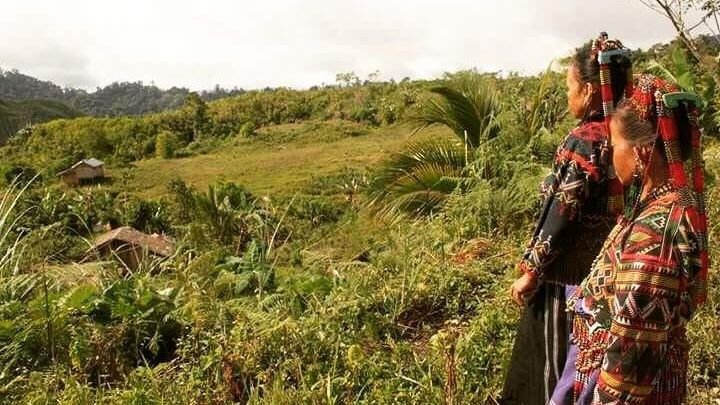 PH '3rd deadliest country' for environmentalists photo from Rappler