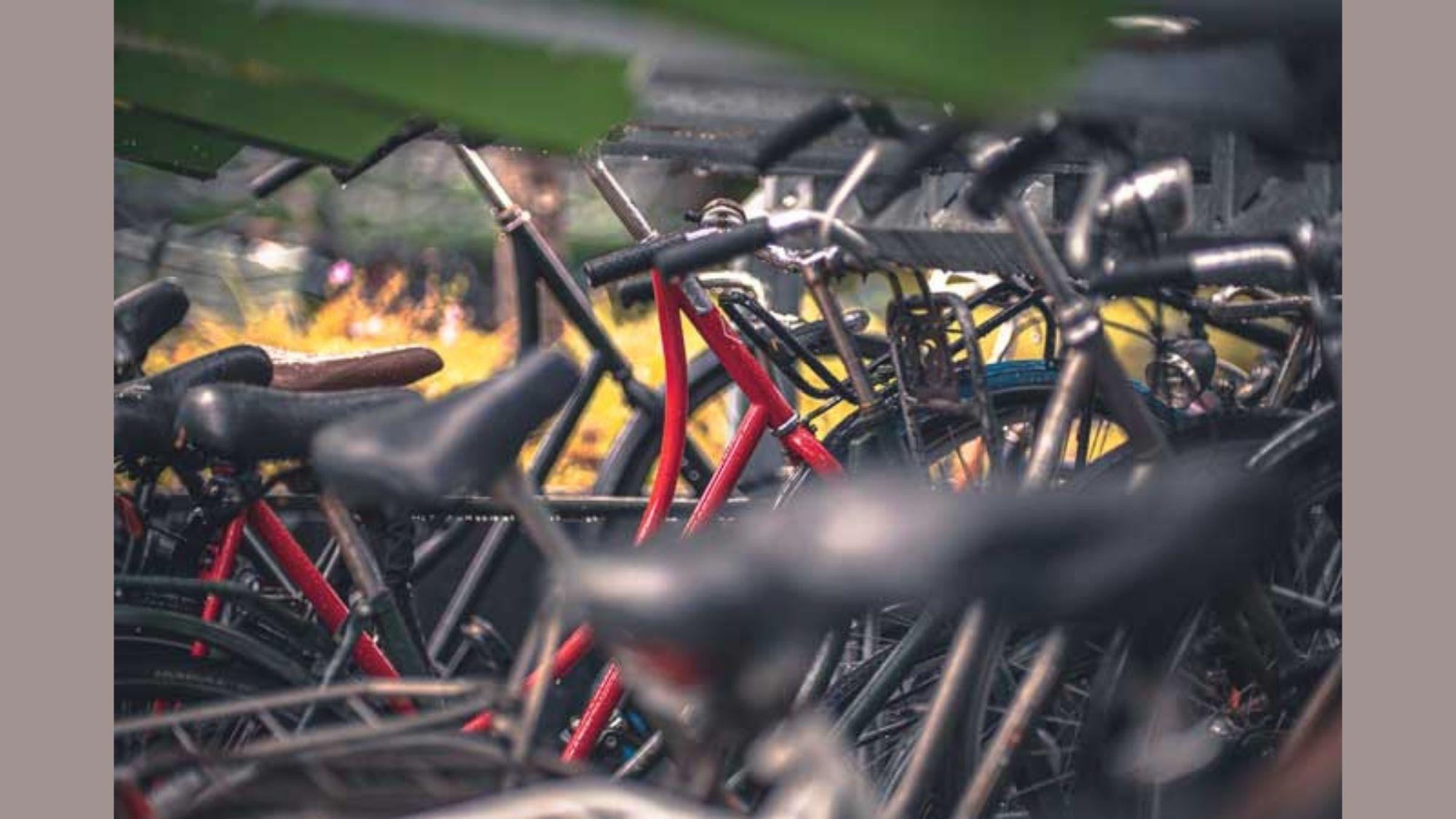 Bike for Livelihood program launched
