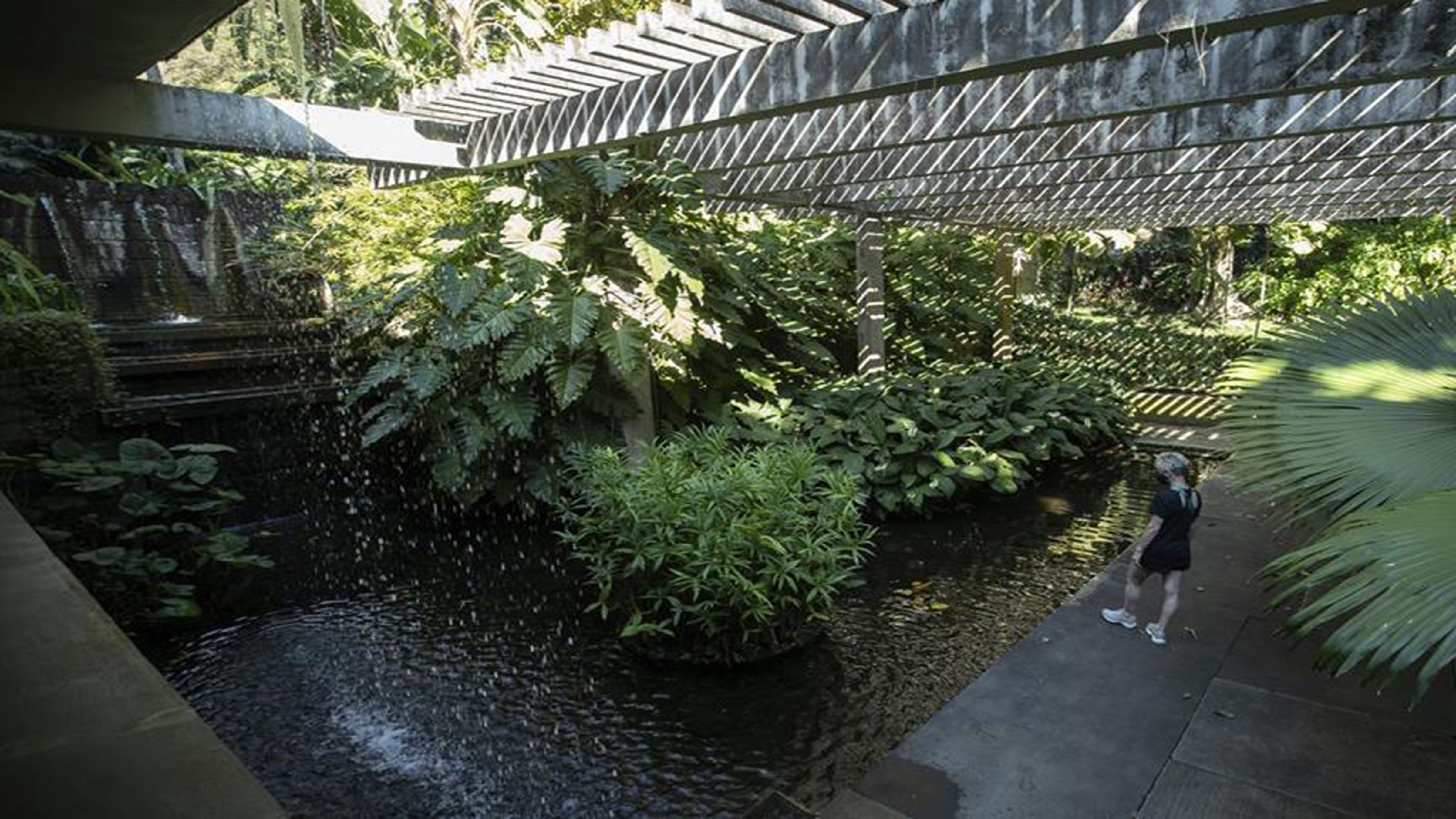 Brazil landscape garden earns UNESCO world heritage status photo from Yahoo