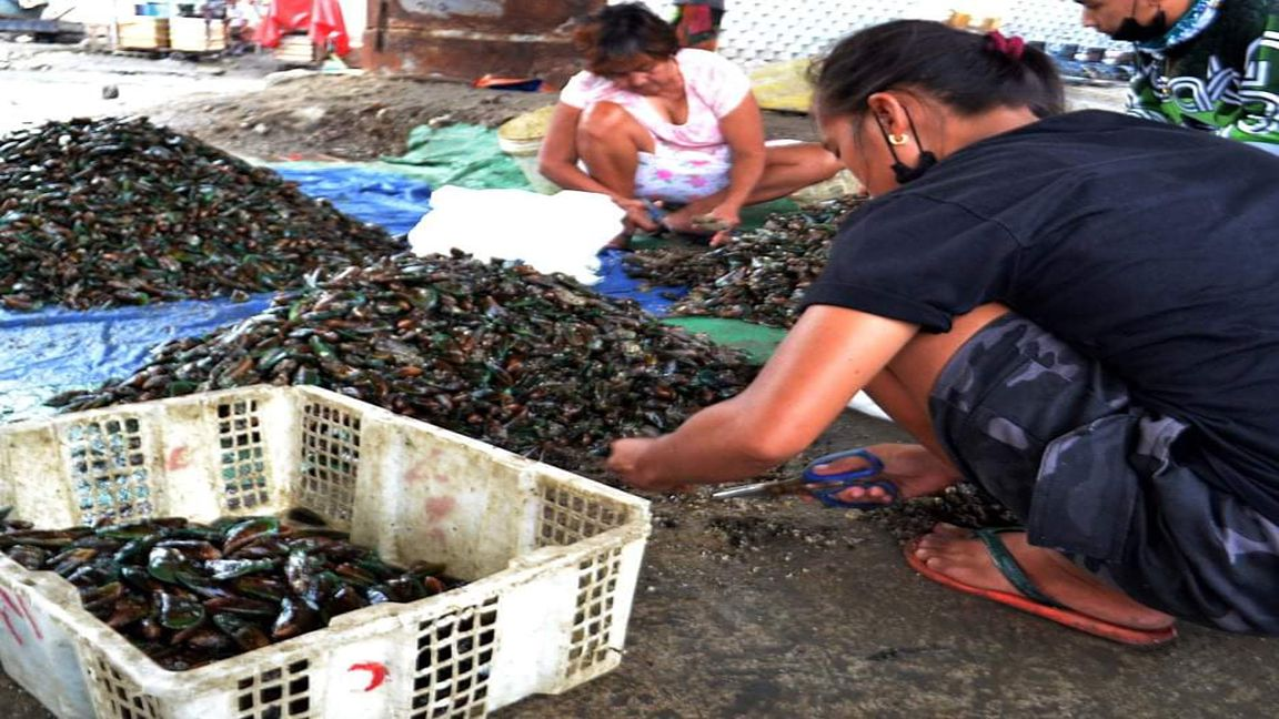 RED TIDE WARNING UP IN 9 AREAS IN PH Photo by Mike Taboy