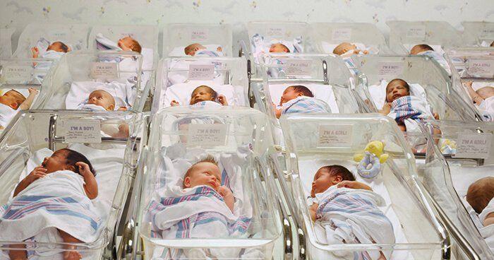 Lockdown Babies