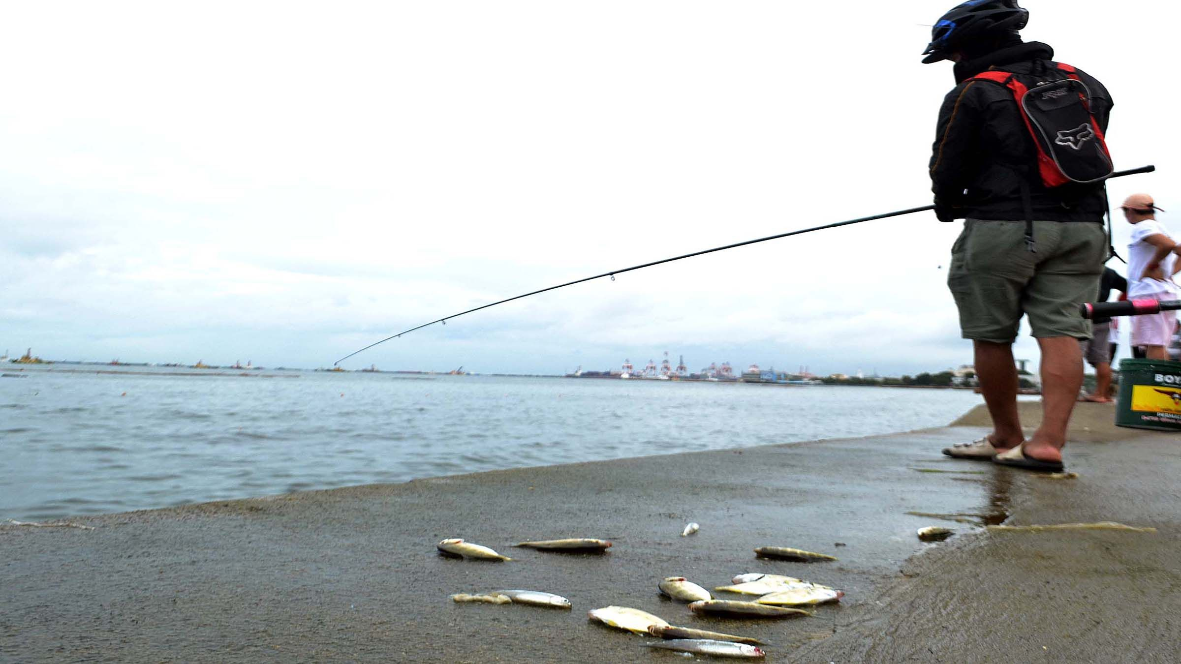 SMALL CATCH photo by Mike Taboy