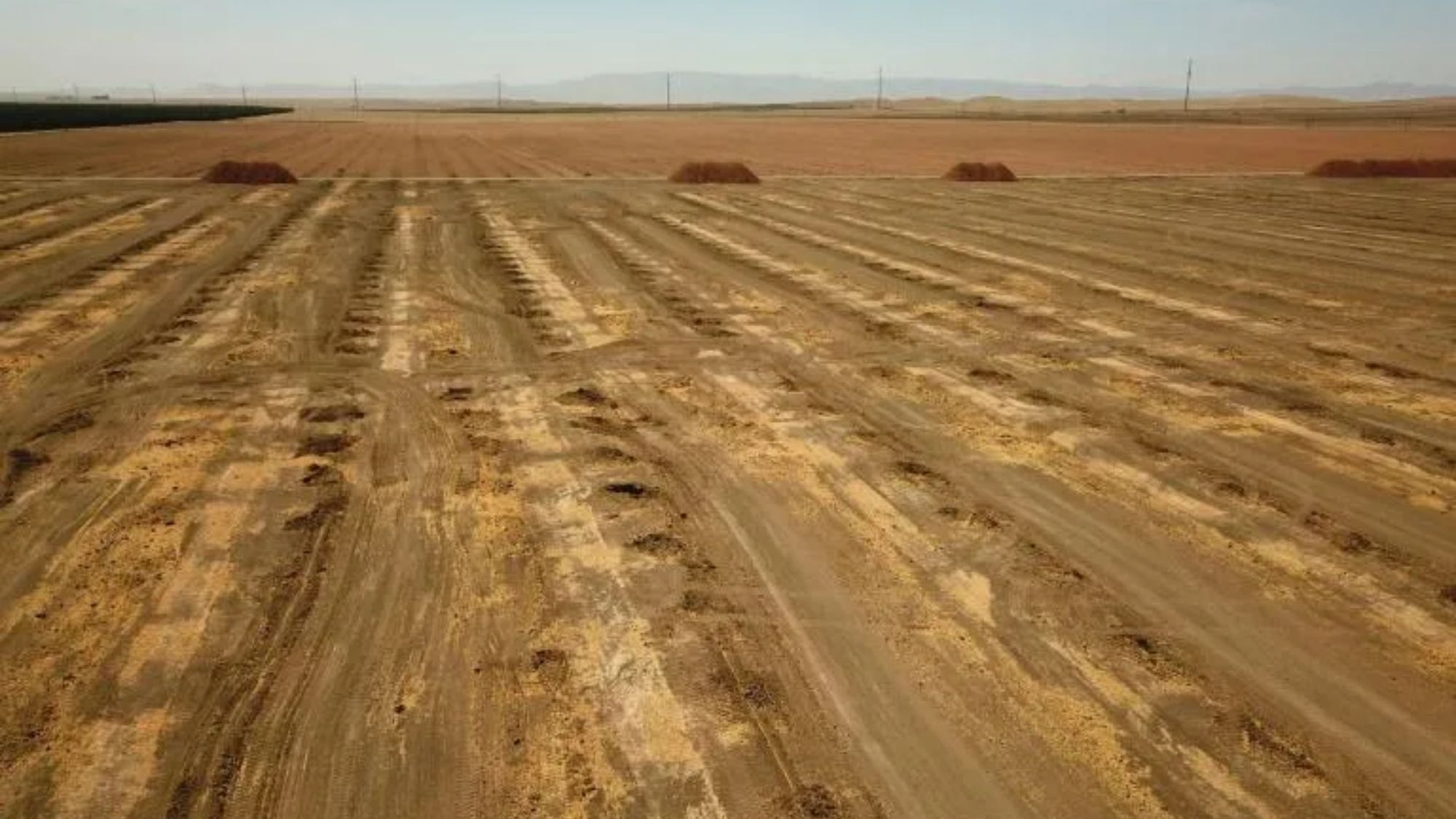 Historic drought threatens US food supplies from California farms photo from Yahoo News