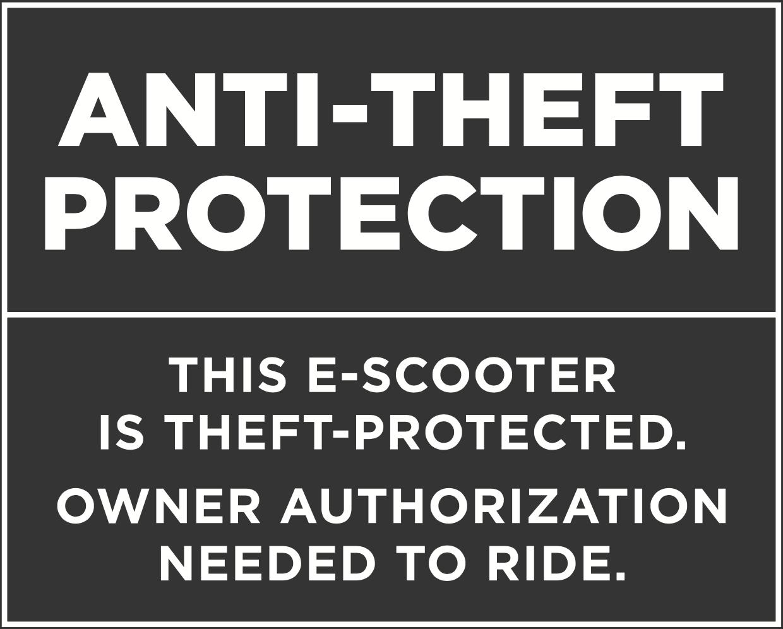 Augment ES 210 Anti-Theft Protection