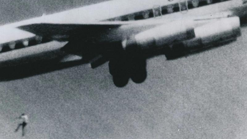 Aircraft Stowaways