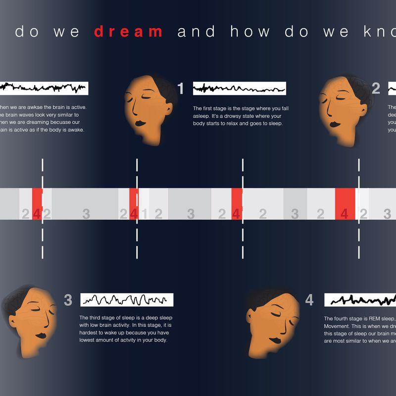 Science of sleep: infographic