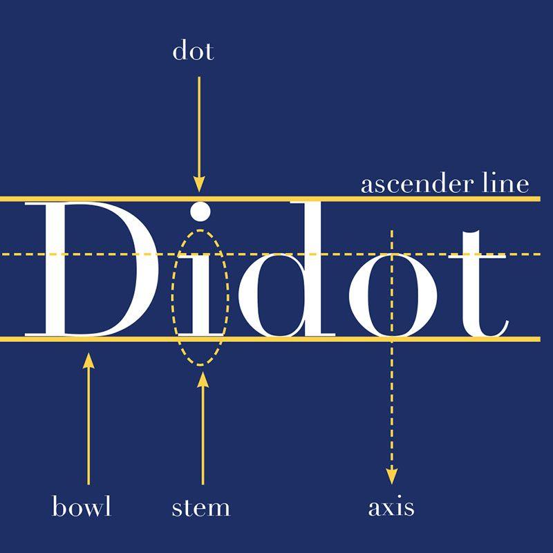 Didot Type Specimen