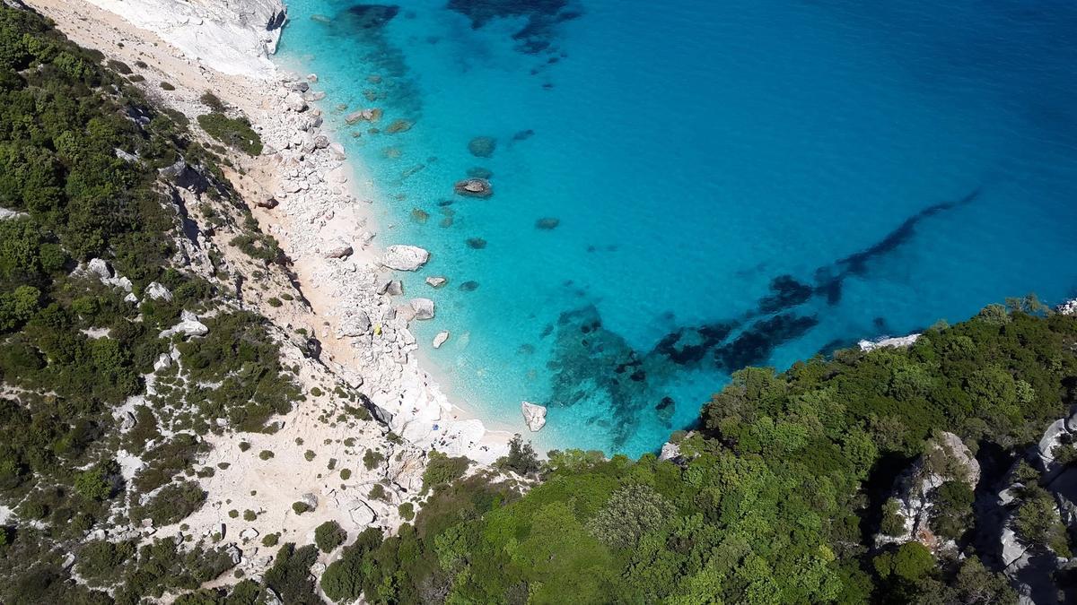 Mediterranean Turning Tropical