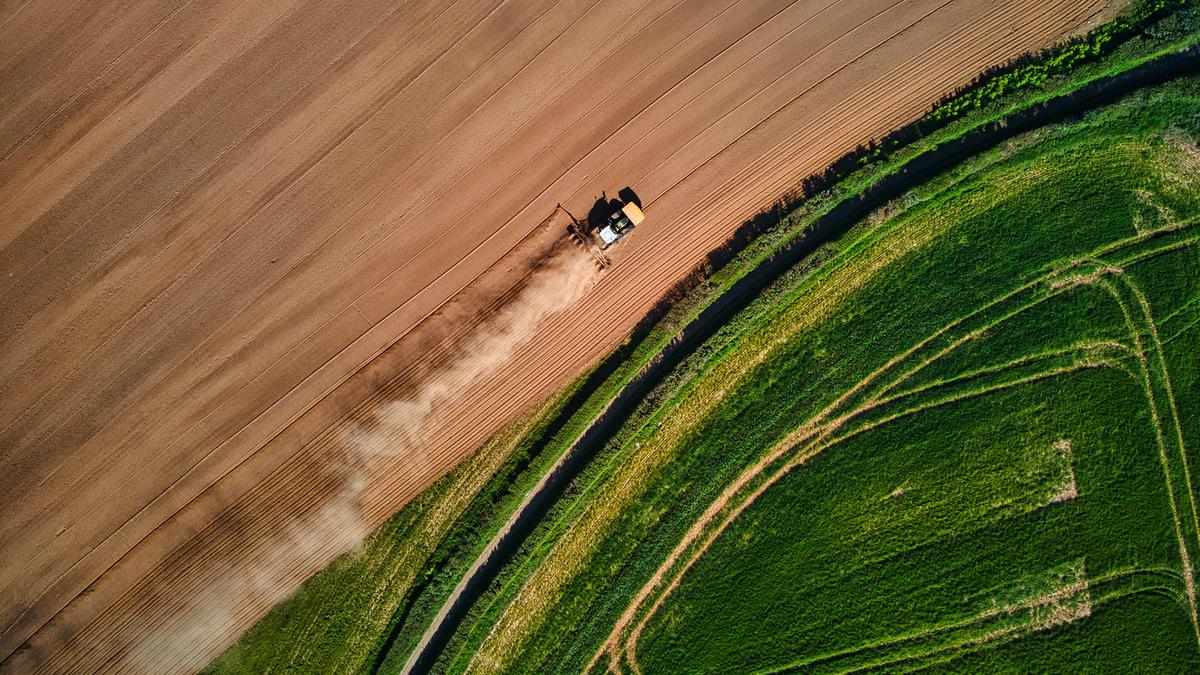 Changing Climate, Changing Cropland