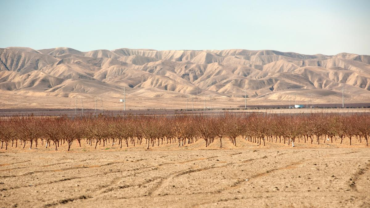 Water supply alert issued in California Water Restrictions