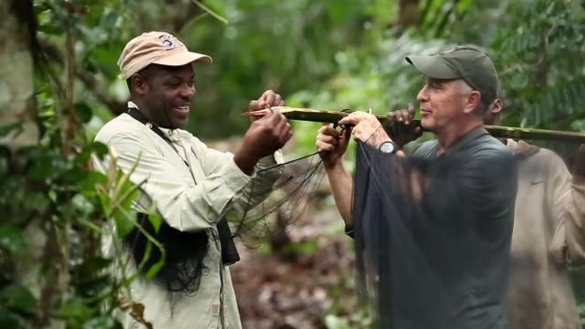 Dr. Kevin Njabo and Dr. Smith (right) doing research on birds in the rainforests of Cameroon.
