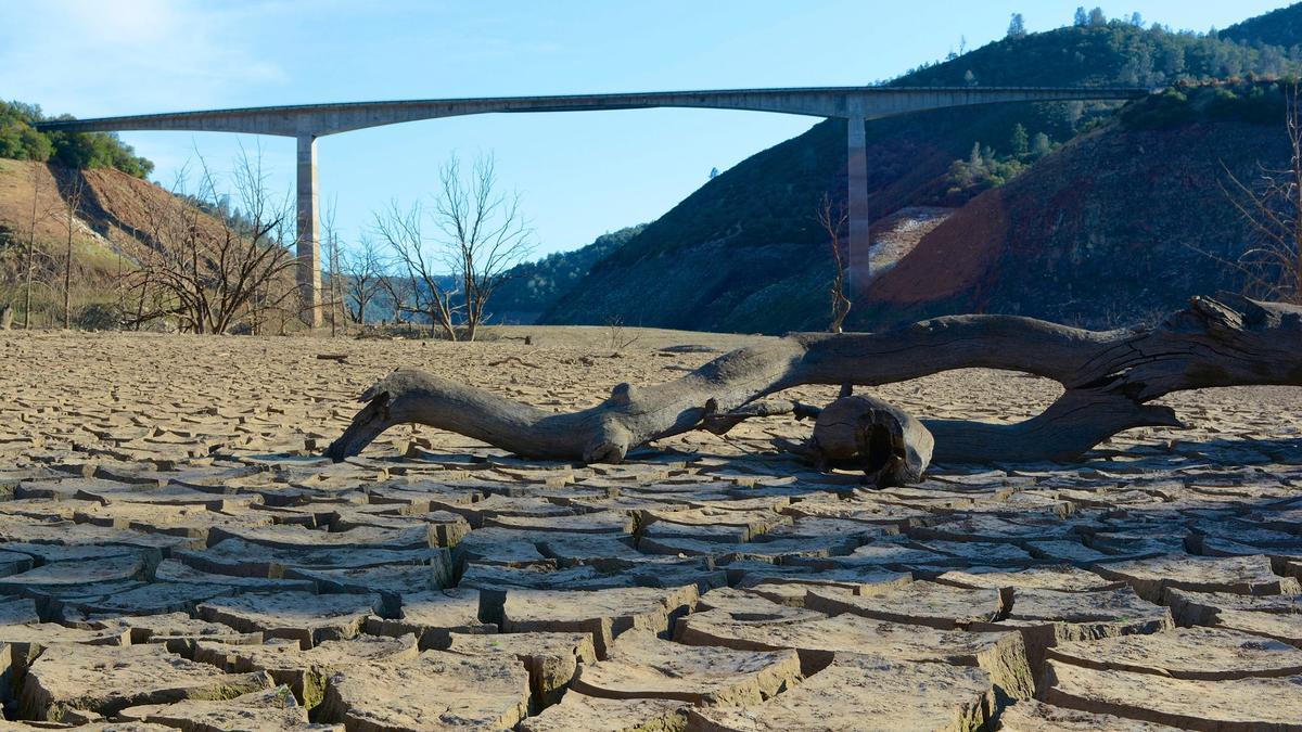 Wildlife response to California mega-drought