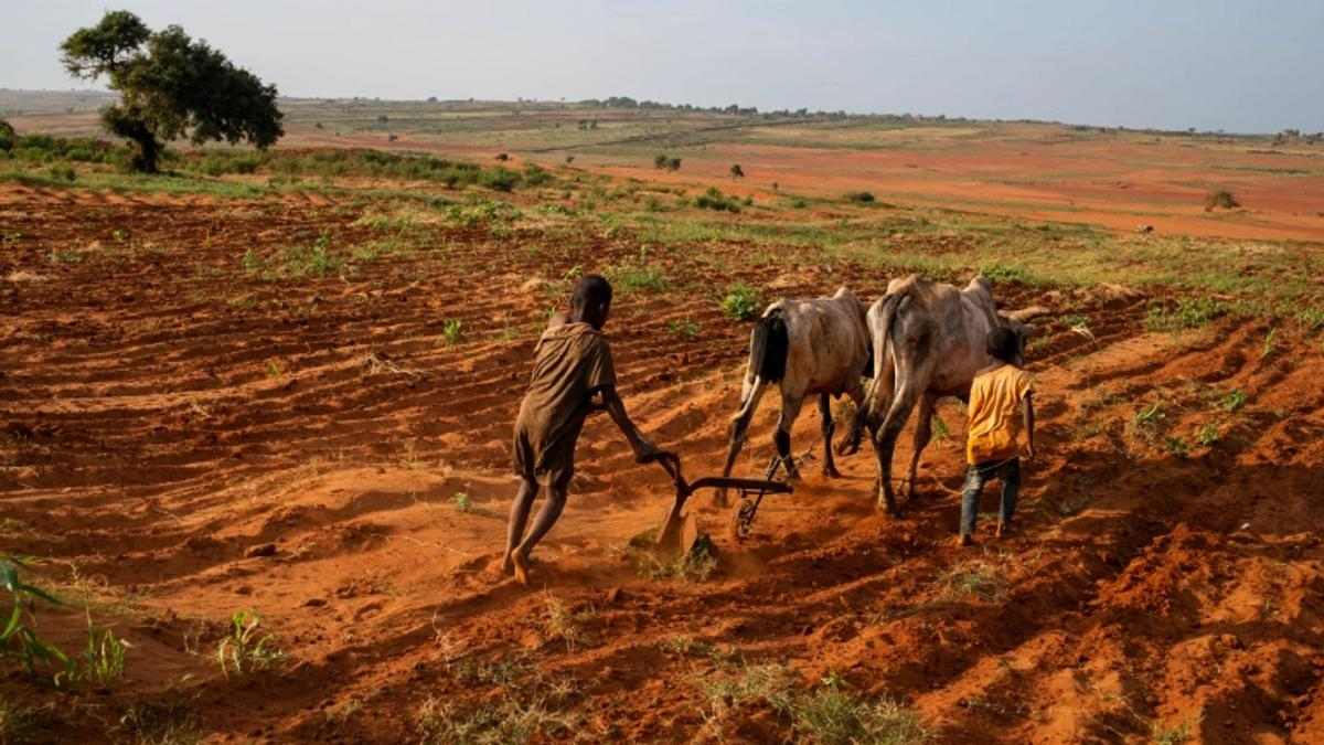 Madagascar Faces World's First 100% Climate Caused Famine
