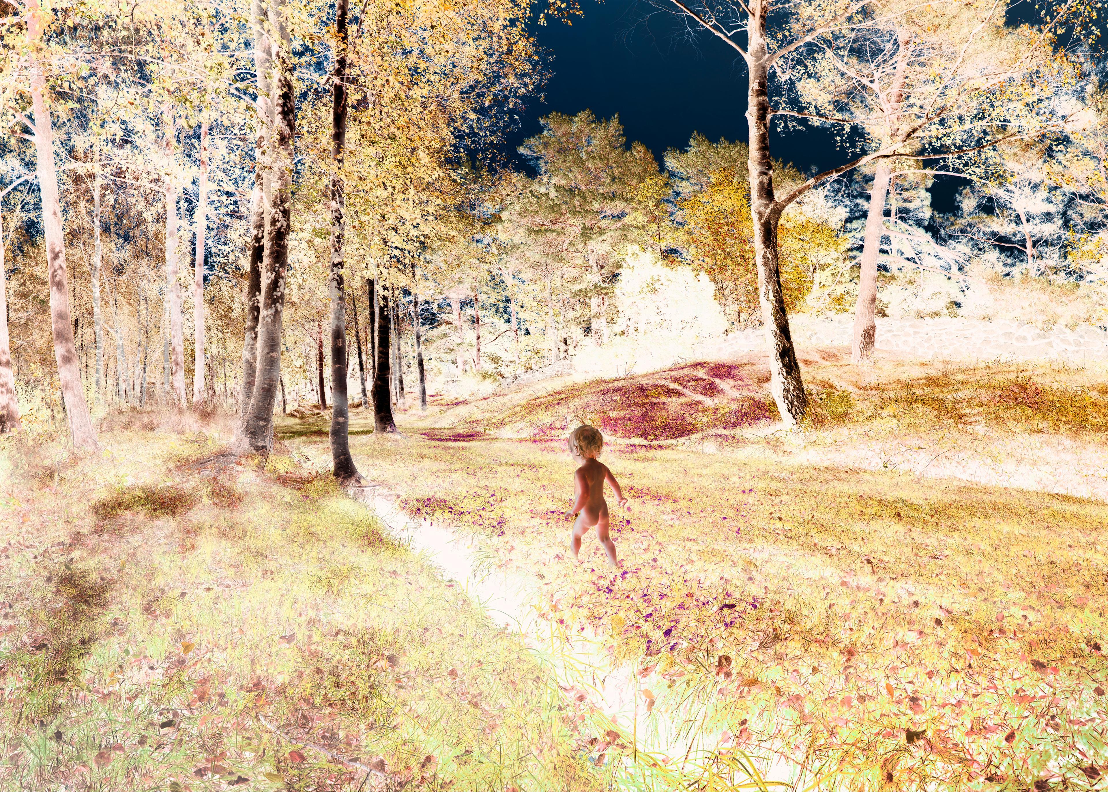 artwork Claude Monet dreaming of summer by Ivo von Renner