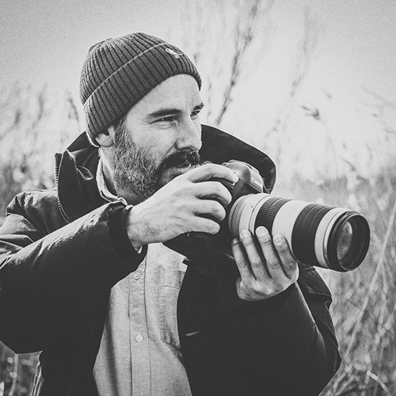 Portrait des Fotografen Nicolas Döring, im Feld mit großer Kamera