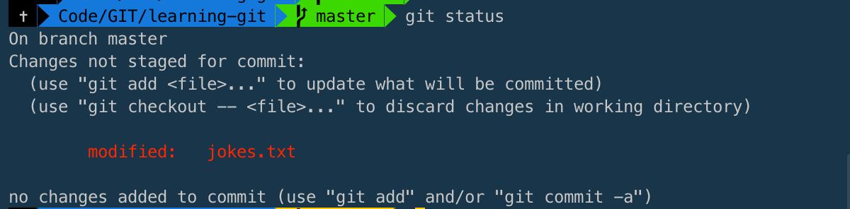 git status within the Terminal