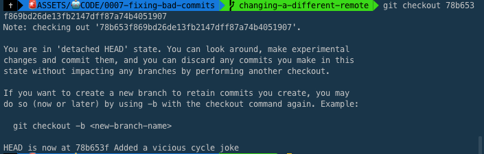 git checkout within the Terminal