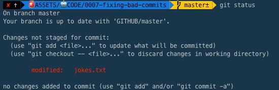 git status in Terminal