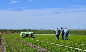Comment détecter les personnes dans les champs cultivés par des machines autonomes ?