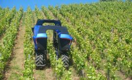 Le bon robot pour chaque tâche dans le vignoble