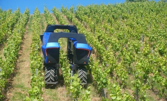 The Right Robot for Every Vineyard Job
