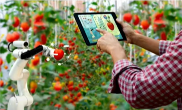 agROBOfood : vers une adoption efficace des technologies robotiques