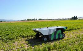 The Next Frontier of Weeding Robots