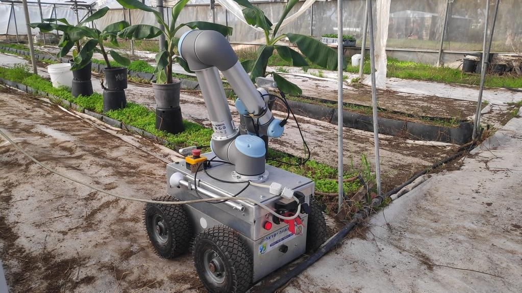 Zoom sur la robotique agricole en Israël