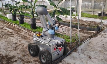 The Evolution of Ag Robotics in Israel