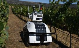 Robotics: Data acquisition and automation for vineyard management