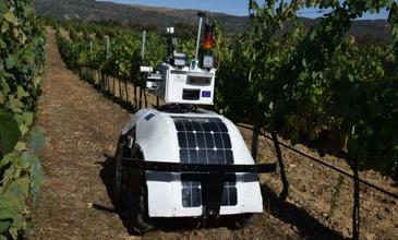 Robotics: Data acquisition and automation for vineyard management