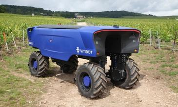 Robots serving viticulture