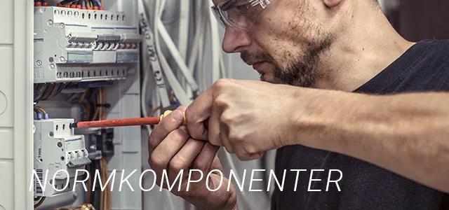 Normkomponenter