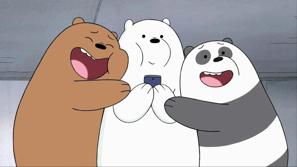 Pardo, Polar e Panda. Os 3 ursos sem curso.