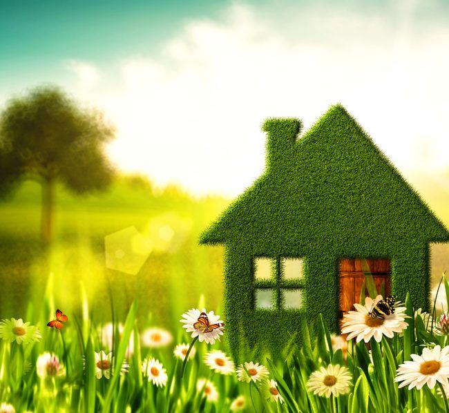 Clean home, clean Earth