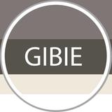 GIBIE