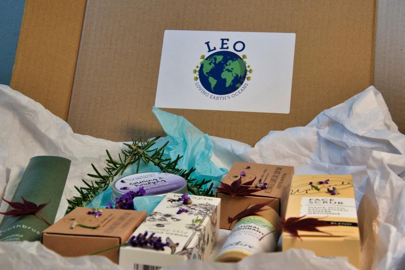 Leo's Box