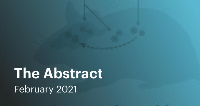 Feb 2021 Abstract Email Thumbnail